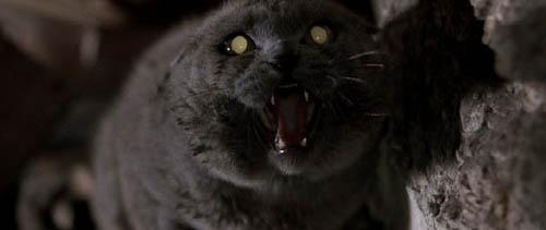Filmes Terror | Cemitério de Animais Maldito