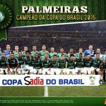 Palmeiras é Campeão da Copa do Brasil 2015. Faça o download do poster do Verdão Campeão!