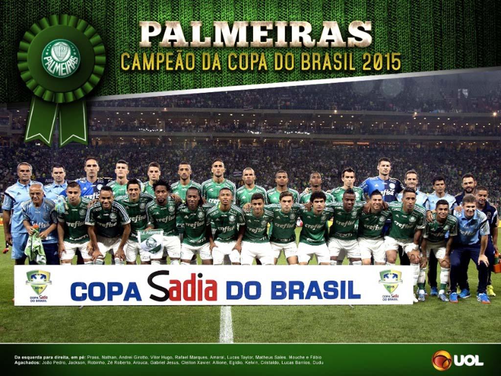 Palmeiras Campeao Copa Brasil 2015 (1)