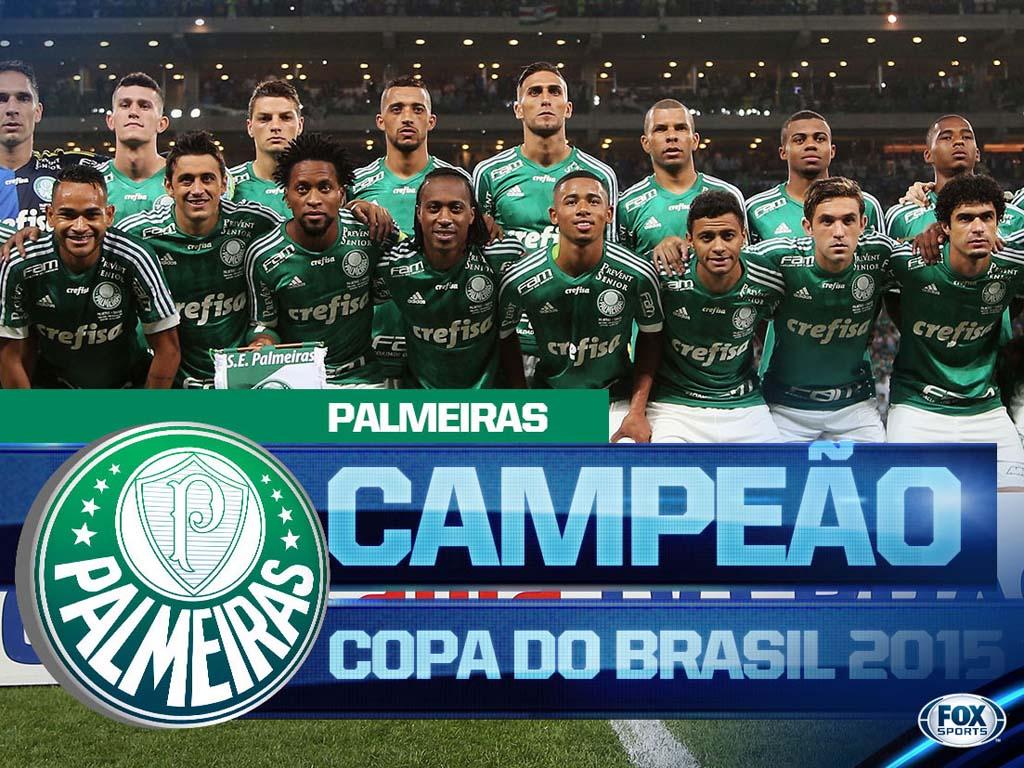 Palmeiras Campeao Copa Brasil 2015 (2)