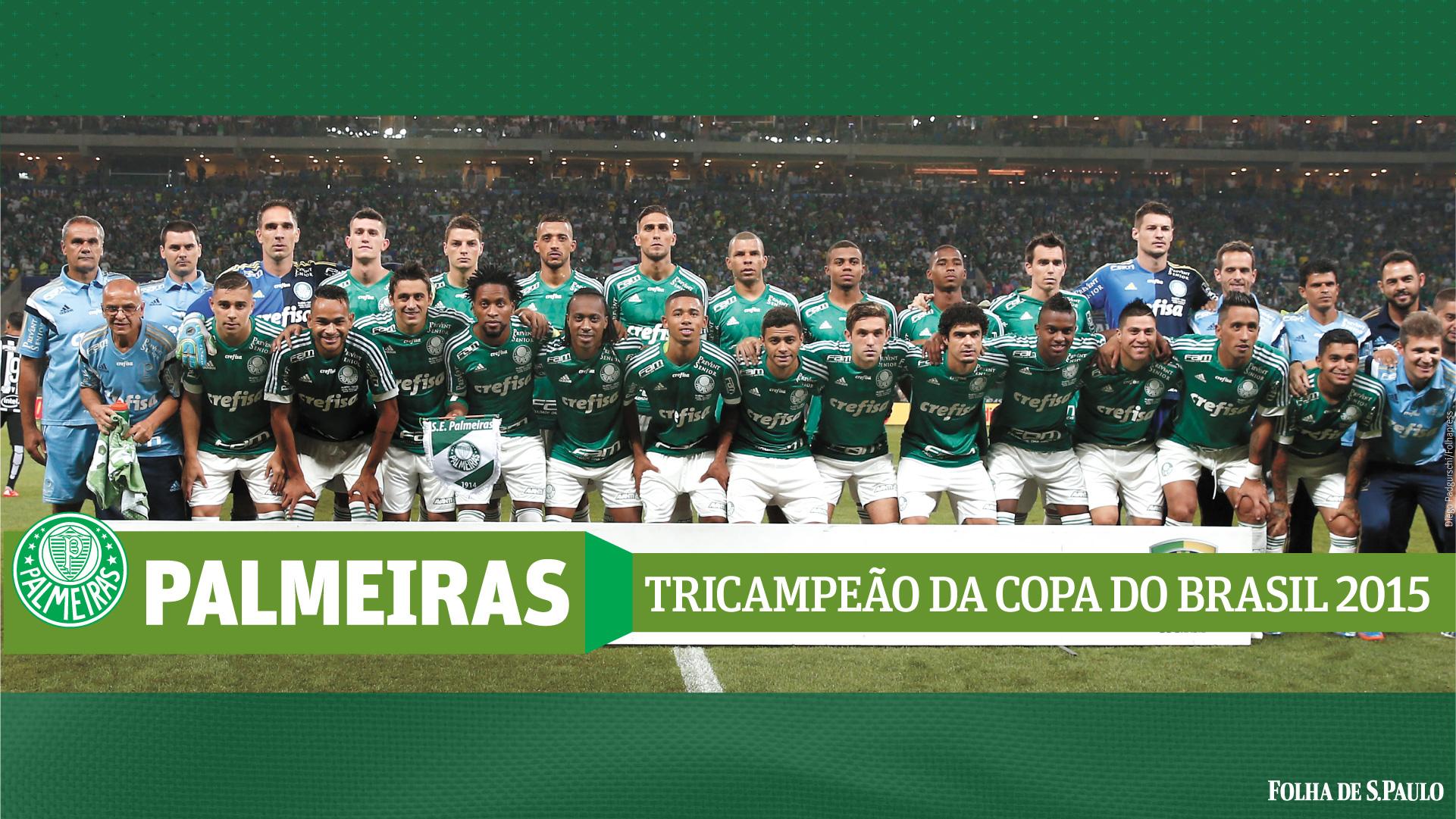 Palmeiras Campeao Copa Brasil 2015 (4)
