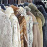 Por que a pele de alguns animais é usada na fabricação de casacos?